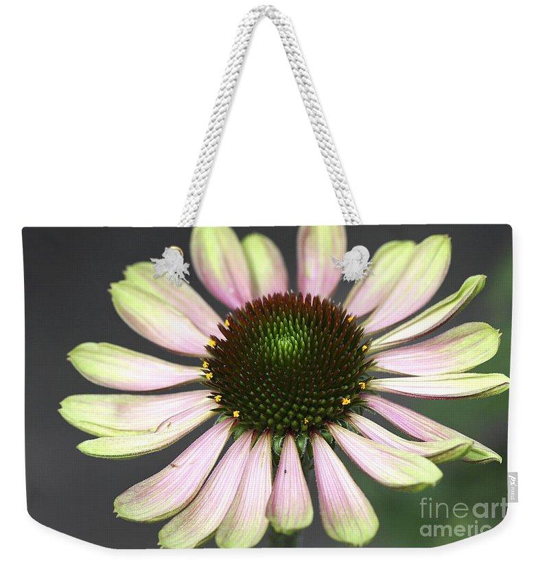 Flower Weekender Tote Bag featuring the photograph Cone Display by Deborah Benoit