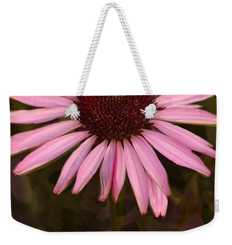 Purple Weekender Tote Bag featuring the photograph Coneflower And Dusty Miller by Lesa Fine