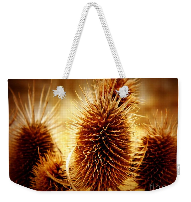 Coneflower Weekender Tote Bag featuring the photograph Coneflower Deadhead by K L Roberts