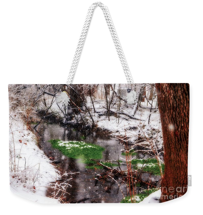 Landscape Weekender Tote Bag featuring the photograph Confused Spring Or Winter by Peggy Franz