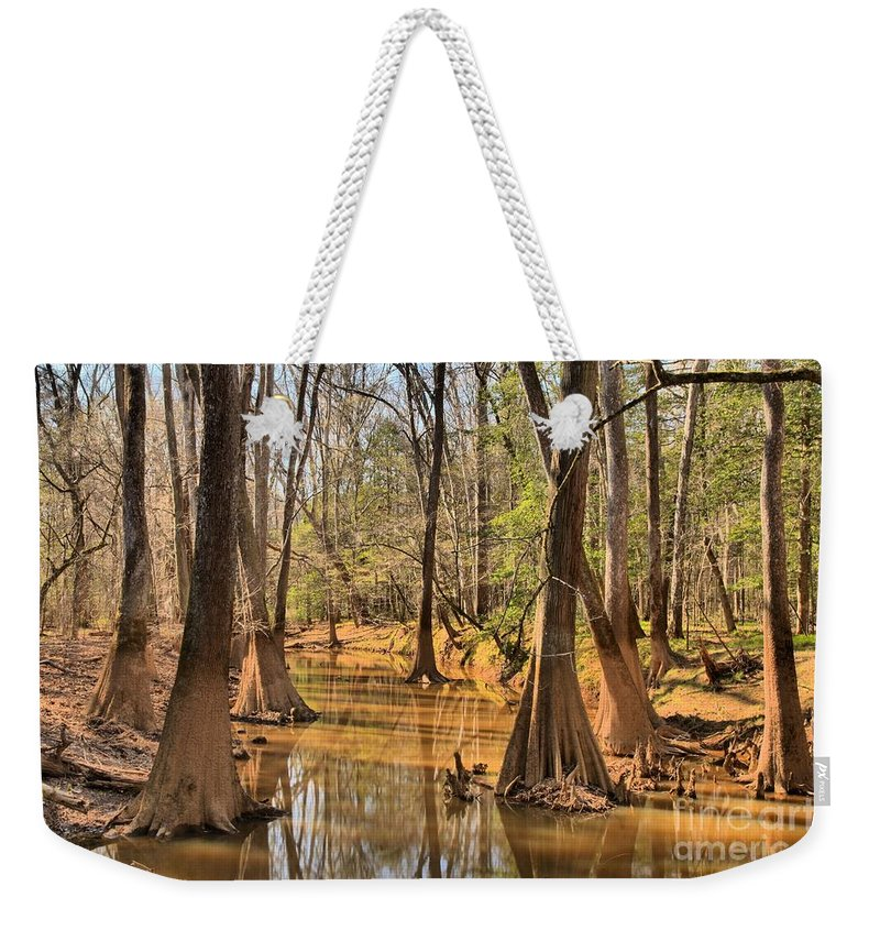 Congaree National Park Weekender Tote Bag featuring the photograph Congaree National Park by Adam Jewell