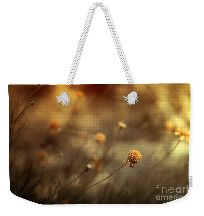 Flowers Weekender Tote Bag featuring the photograph Connections by Trish Mistric