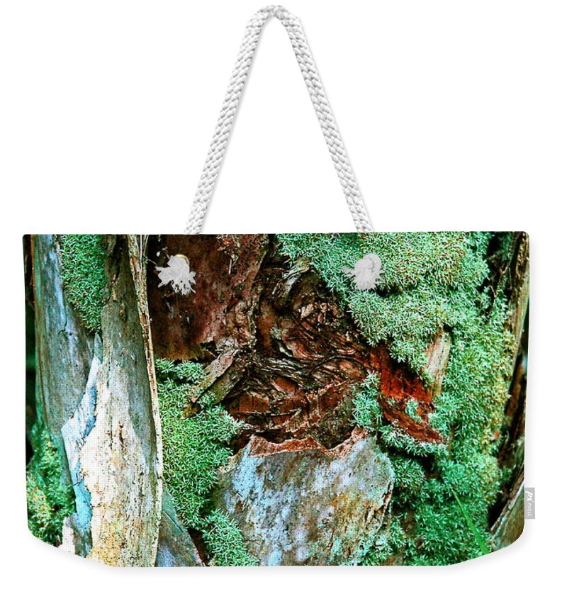 Conquistador Weekender Tote Bag featuring the photograph Conquistador Of The Palm by Norman Johnson