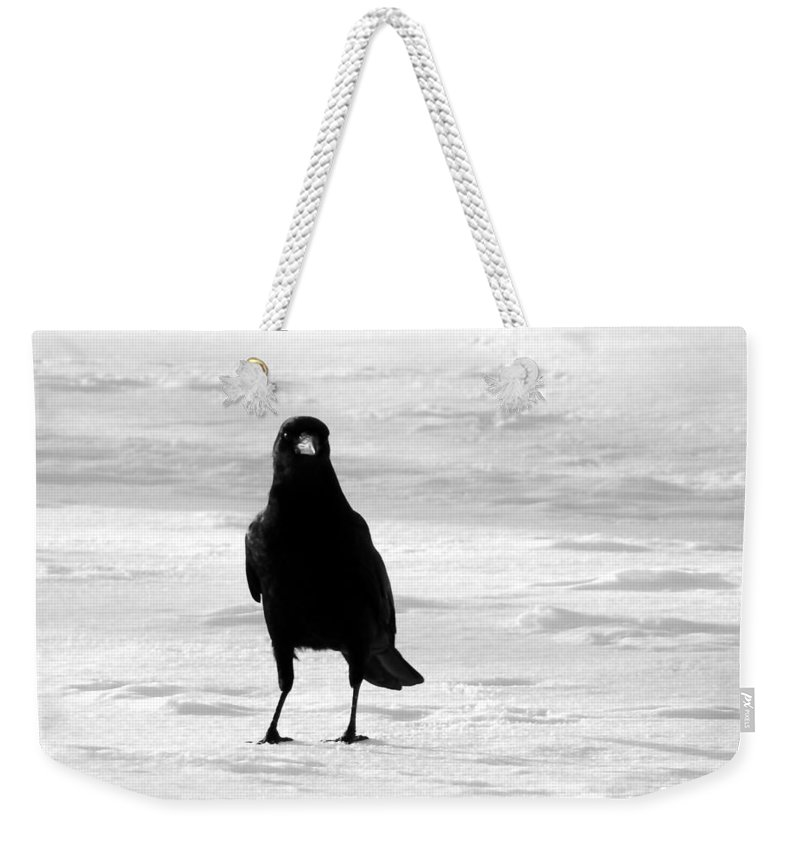 Snow Weekender Tote Bag featuring the photograph Contrast by Gothicrow Images