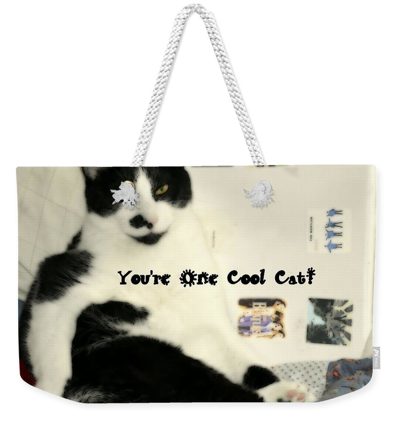 Cat Weekender Tote Bag featuring the photograph Cool Cat Greeting Card by Kathy Barney
