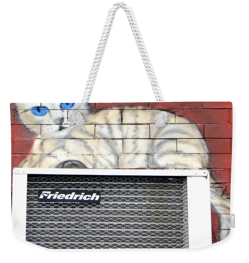 Cat Weekender Tote Bag featuring the photograph Cool Kitty by Ed Weidman