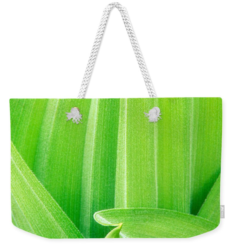 North America Weekender Tote Bag featuring the photograph Corn Lily Leaf Detail Yosemite Np California by Dave Welling