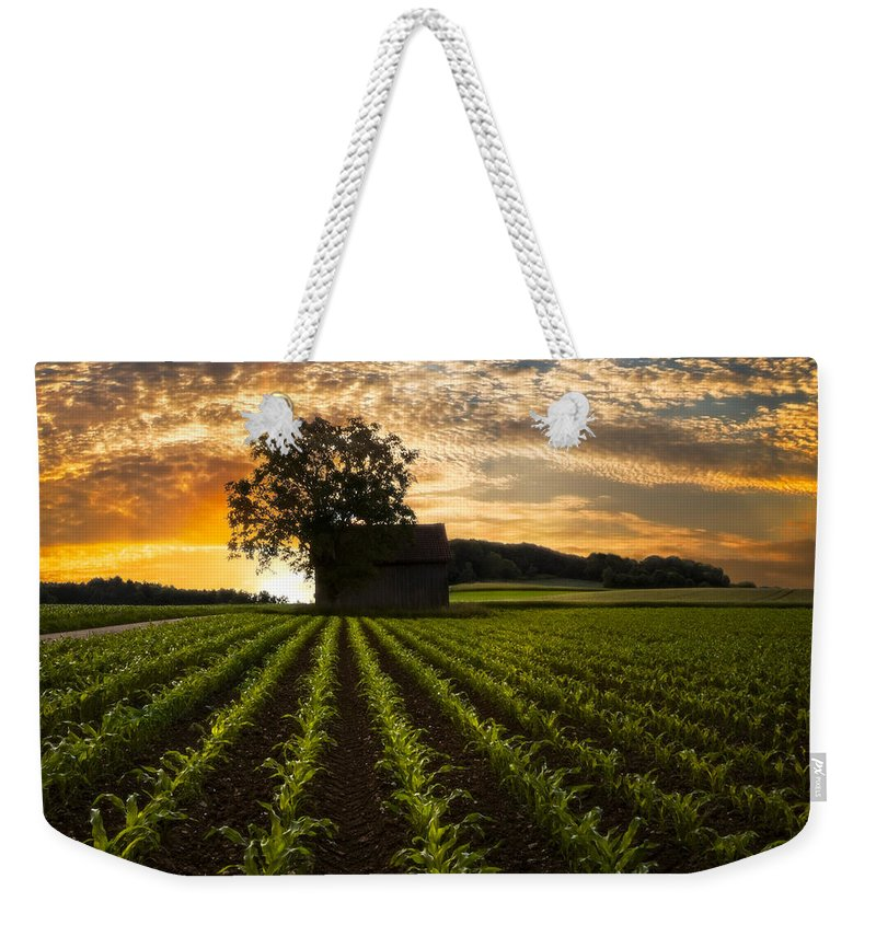 Appalachia Weekender Tote Bag featuring the photograph Corn Rows by Debra and Dave Vanderlaan