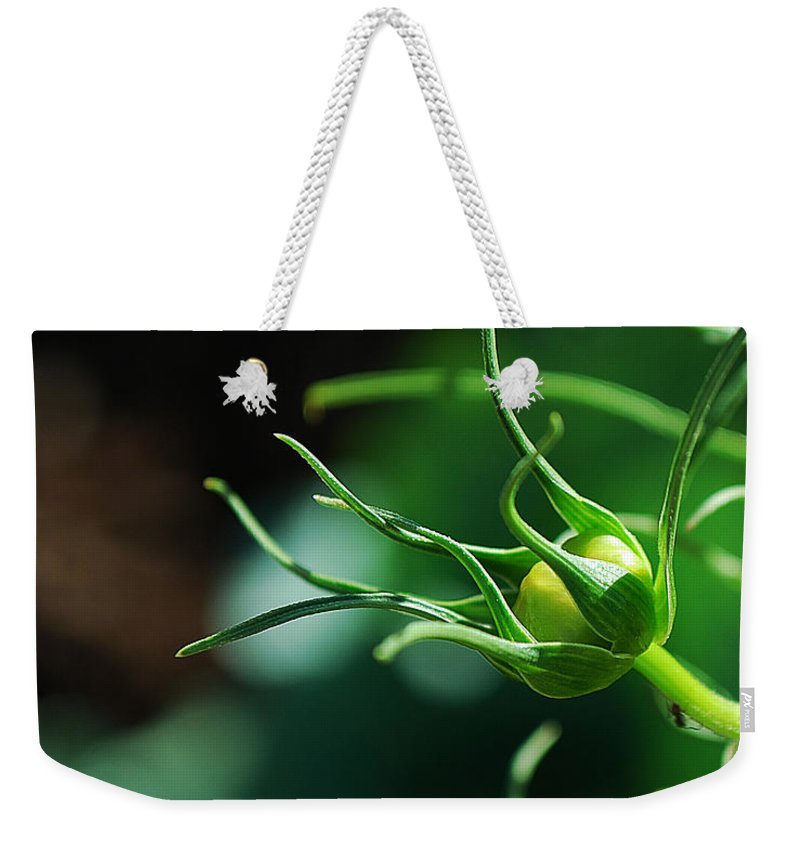 Becky Furgason Weekender Tote Bag featuring the photograph #cosmos by Becky Furgason