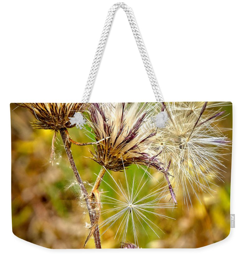 Cotten Grass Weekender Tote Bag featuring the photograph Cotten Grass by Jim Thompson
