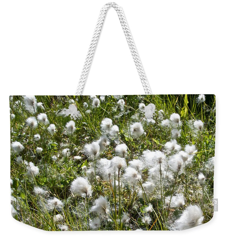 Cotton Grass Weekender Tote Bag featuring the photograph Cotton Grass On Homestead Trail In Homer-ak- by Ruth Hager