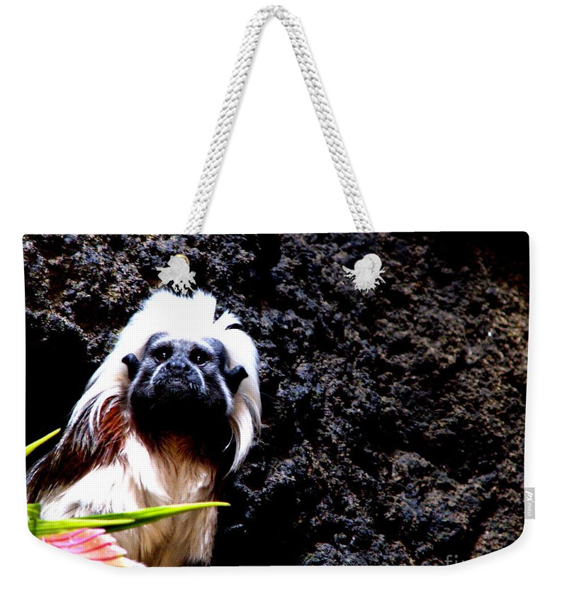 Patzer Weekender Tote Bag featuring the photograph Cotton Top Tamarin by Greg Patzer