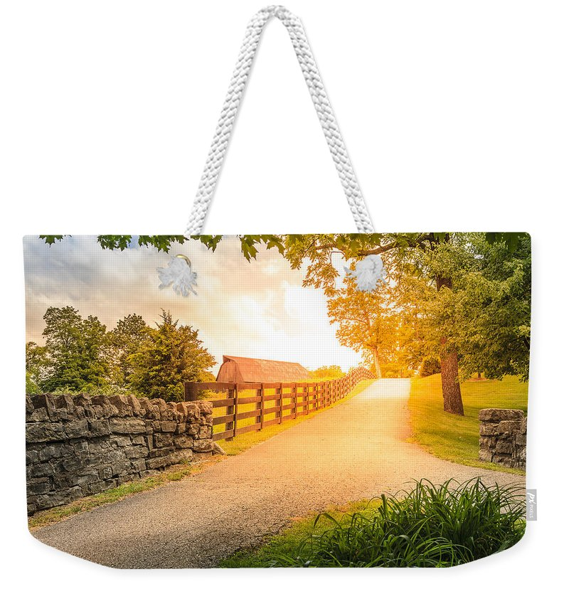 Agriculture Weekender Tote Bag featuring the photograph Country Alley by Alexey Stiop