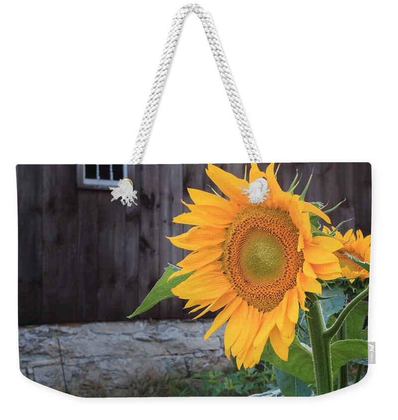 Sunflower Weekender Tote Bag featuring the photograph Country Flower by Bill Wakeley