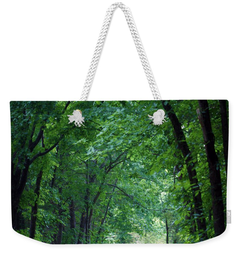 Tree Weekender Tote Bag featuring the photograph Country Lane by Cricket Hackmann