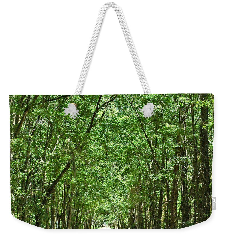 Landscape Weekender Tote Bag featuring the photograph Country Lane by Norman Johnson