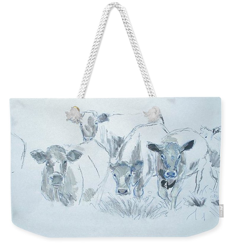 Mike Jory Cows Bulls Cattle Sheep Goats Horses Fields Countryside Farm Agriculture Rural Wildlife Nature Animal Herd Hills Hedges British Gloucestershire Animals Weekender Tote Bag featuring the painting Cow Drawing by Mike Jory