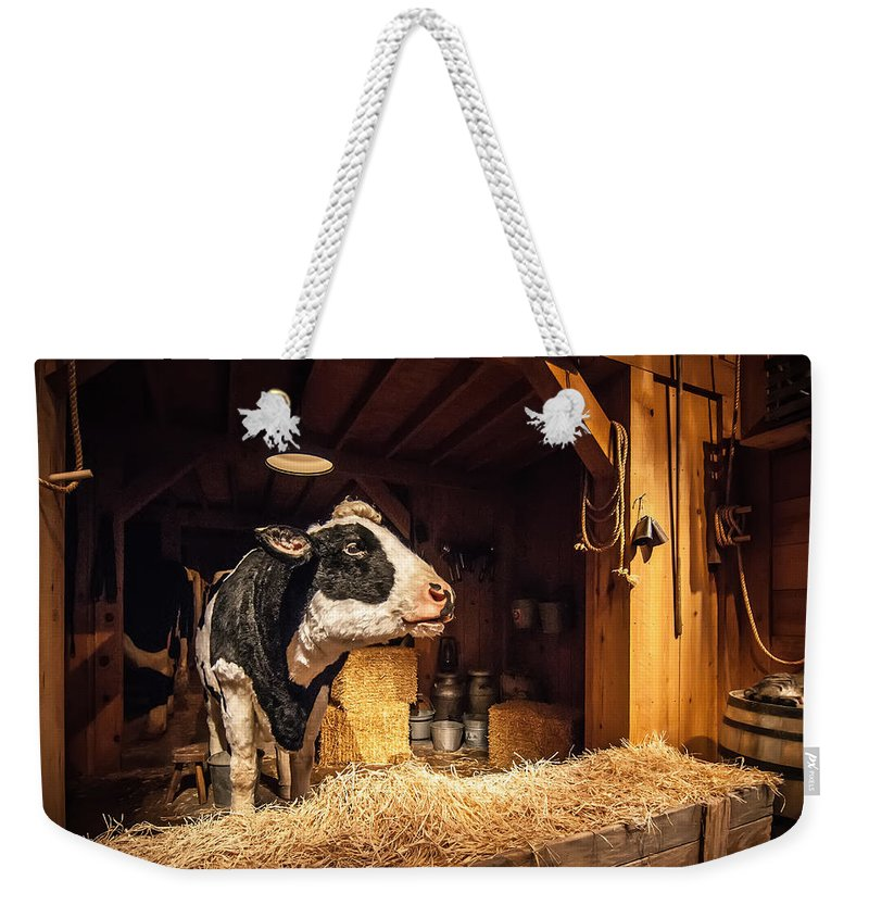 Animal Weekender Tote Bag featuring the photograph Cow On The Farm by Alex Grichenko