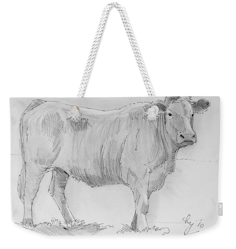 Mike Jory Cows Weekender Tote Bag featuring the painting Cow Pencil Drawing by Mike Jory
