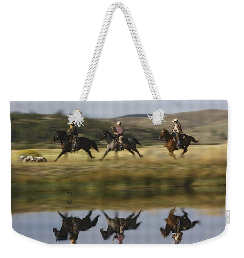 Feb0514 Weekender Tote Bag featuring the photograph Cowboys Riding With Dogs Oregon by Konrad Wothe