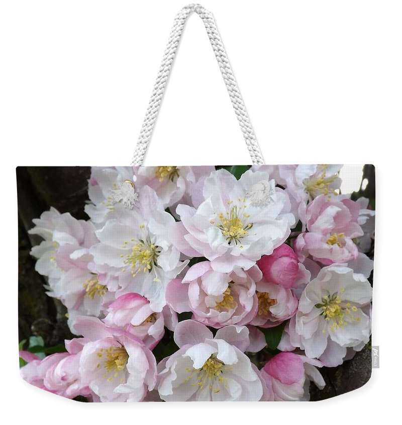 Crab Apple Weekender Tote Bag featuring the photograph Crab Apple Blossoms by Sara Raber