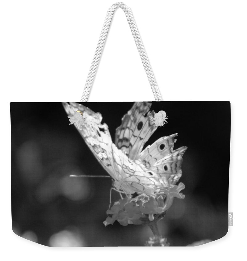 Lepidopterology Weekender Tote Bag featuring the photograph Cracked Wing by Rob Hans