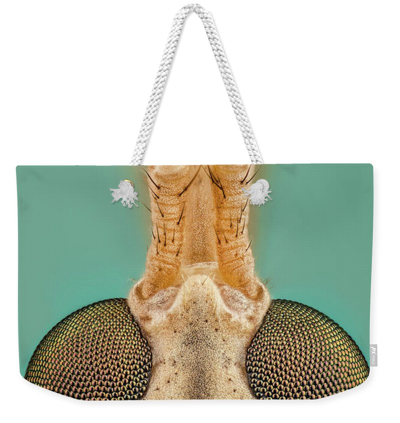 Image Digitally Manipullated Weekender Tote Bag featuring the photograph Crane Fly 10x by Javier Torrent