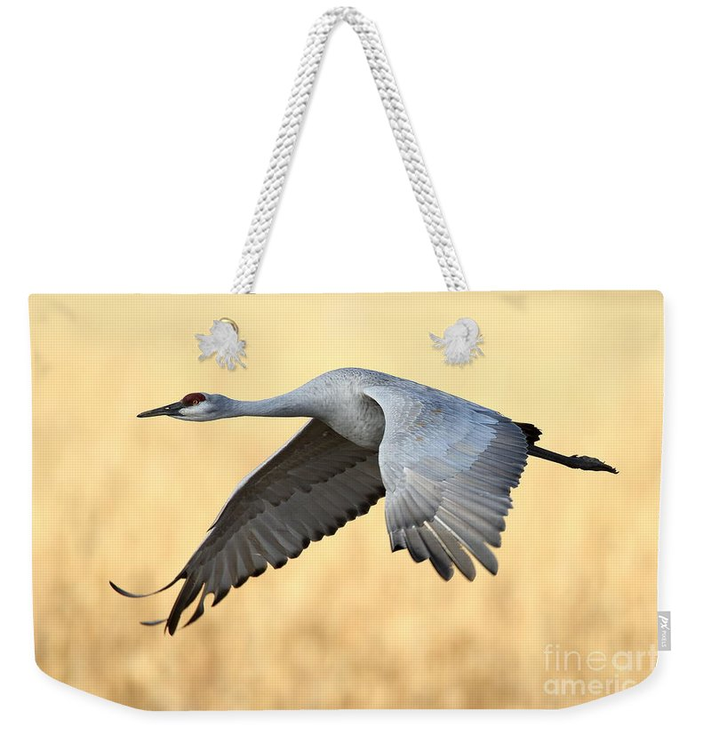 Crane Weekender Tote Bag featuring the photograph Crane Over Golden Field by Bryan Keil