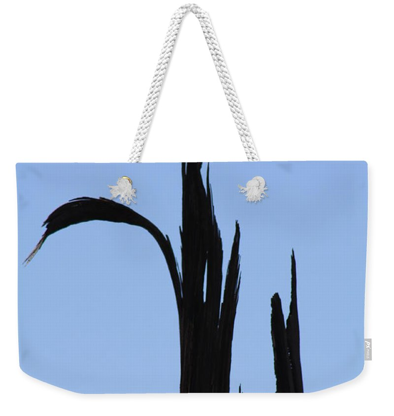 Crane Weekender Tote Bag featuring the photograph Crane Wood by Brandi Maher