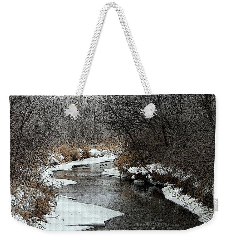 Weekender Tote Bag featuring the photograph Creek Mood by Debbie Hart