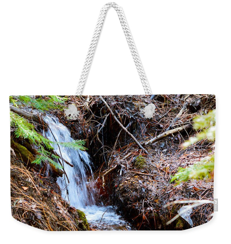 Nevada Weekender Tote Bag featuring the photograph Creeks Fall by Brent Dolliver