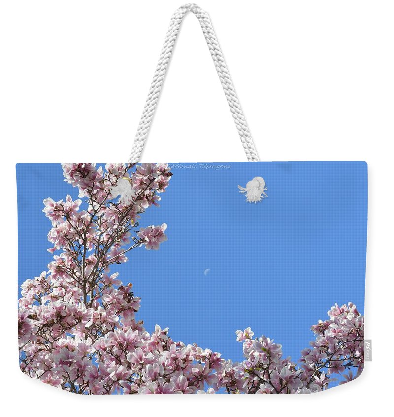 Magnolia Weekender Tote Bag featuring the photograph Crescent Around Crescent by Sonali Gangane