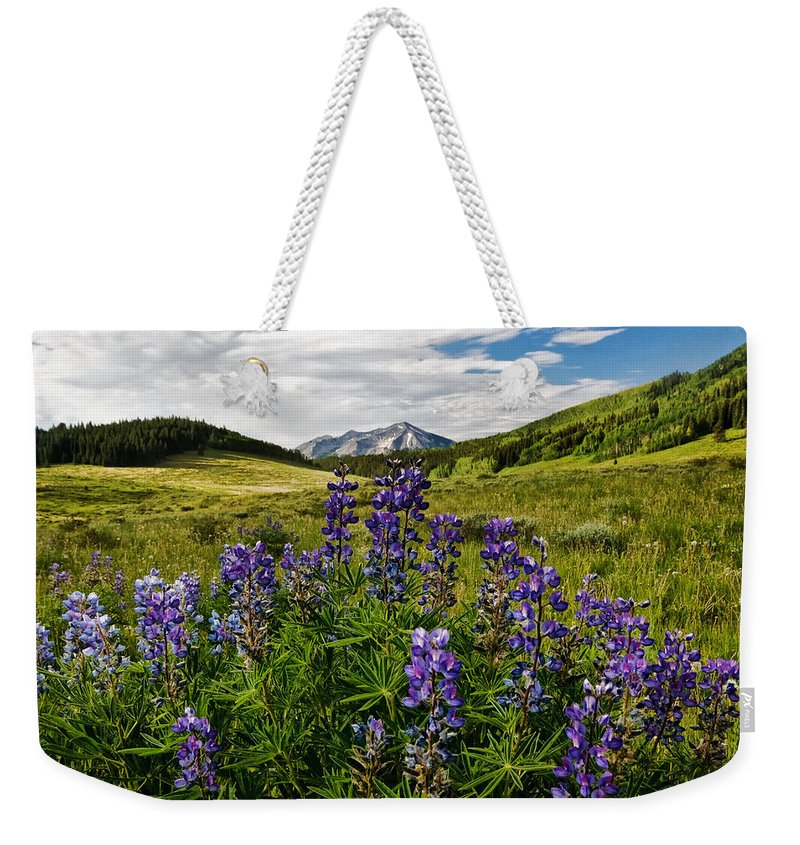 Crested Butte Weekender Tote Bag featuring the photograph Crested Butte Lupines by Ronda Kimbrow