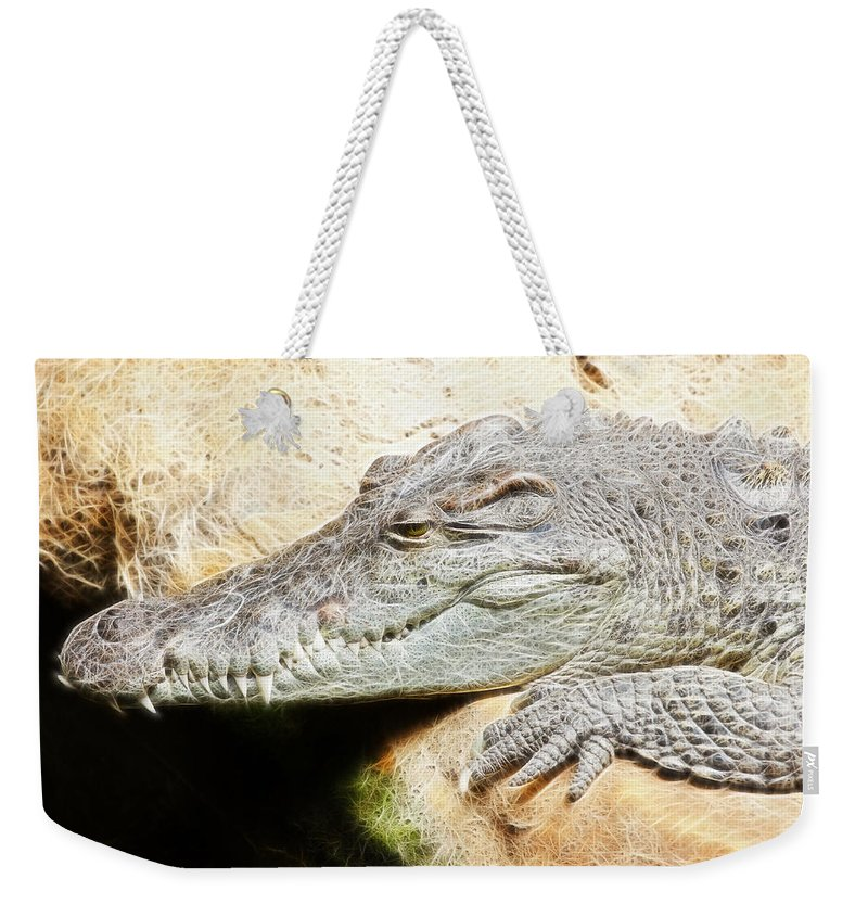 Fractal Weekender Tote Bag featuring the photograph Crocodile Fractal by Pati Photography