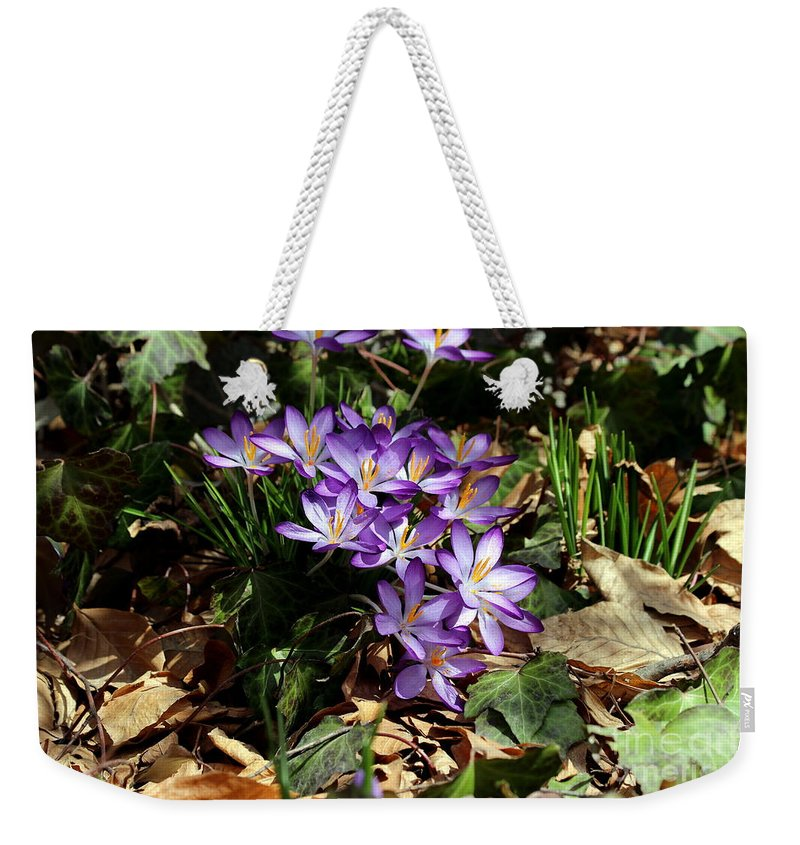Crocus Weekender Tote Bag featuring the photograph Crocus Amongst The Leaf Litter by Kenny Glotfelty