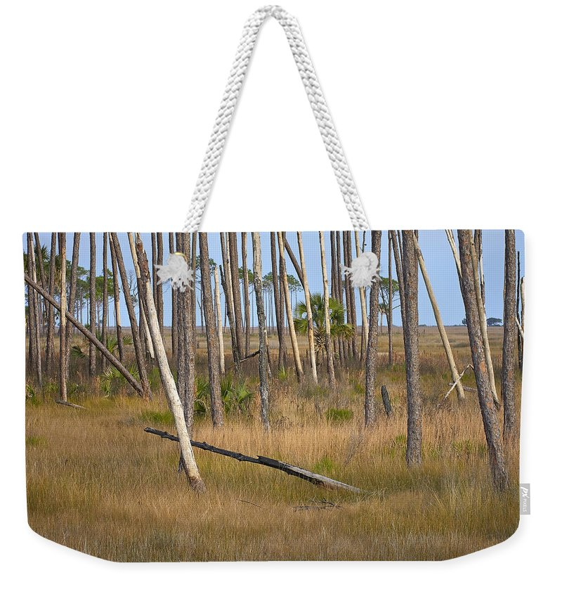 Florida Weekender Tote Bag featuring the photograph Crossed Trees by Bill Chambers