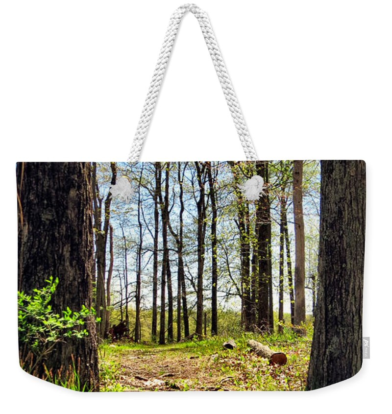 Bridge Weekender Tote Bag featuring the photograph Crossing Over by Art Dingo