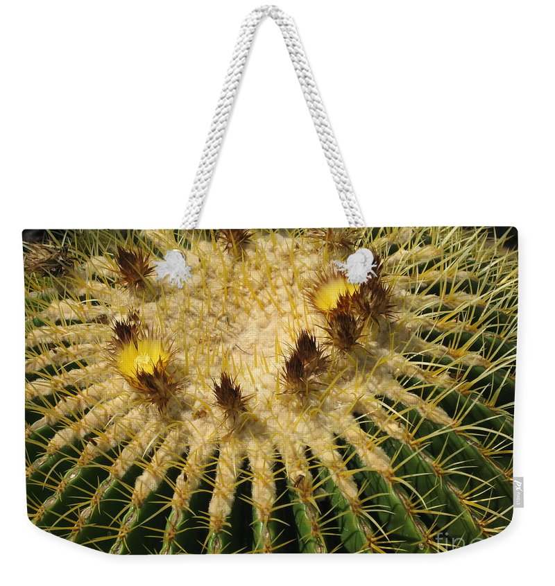Cactus Weekender Tote Bag featuring the photograph Crown Of Thorns by Christiane Schulze Art And Photography