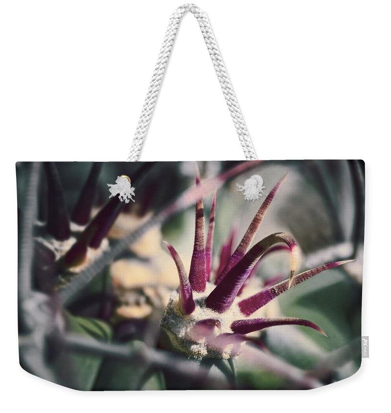 Cactus Weekender Tote Bag featuring the photograph Crown Of Thorns by Kelley King