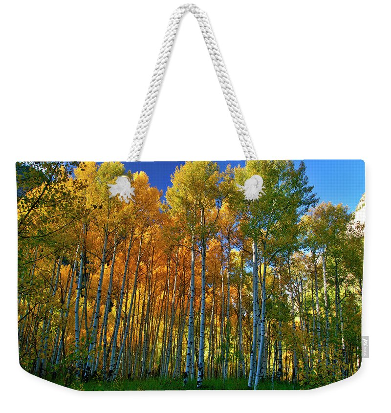 Fall Colors Weekender Tote Bag featuring the photograph Crystal Grove by Jeremy Rhoades