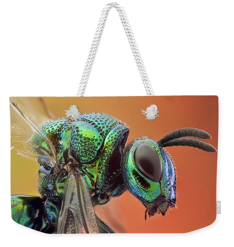 Studio Shot Weekender Tote Bag featuring the photograph Cucko Wasp by 2013 Ap