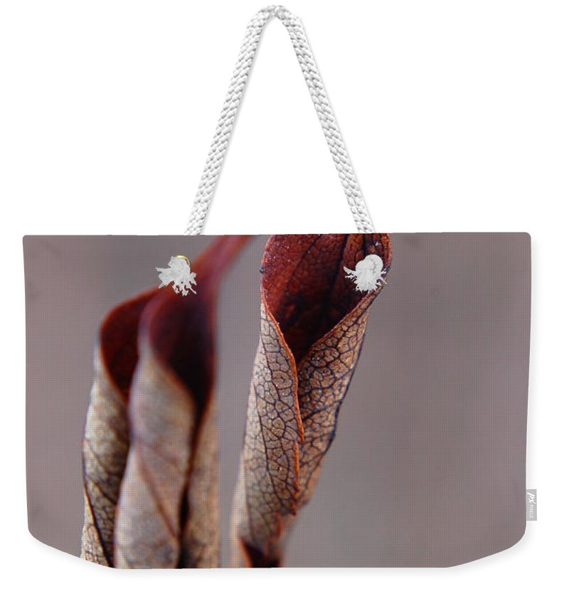 Leaf Weekender Tote Bag featuring the photograph Curled by Alea Photography