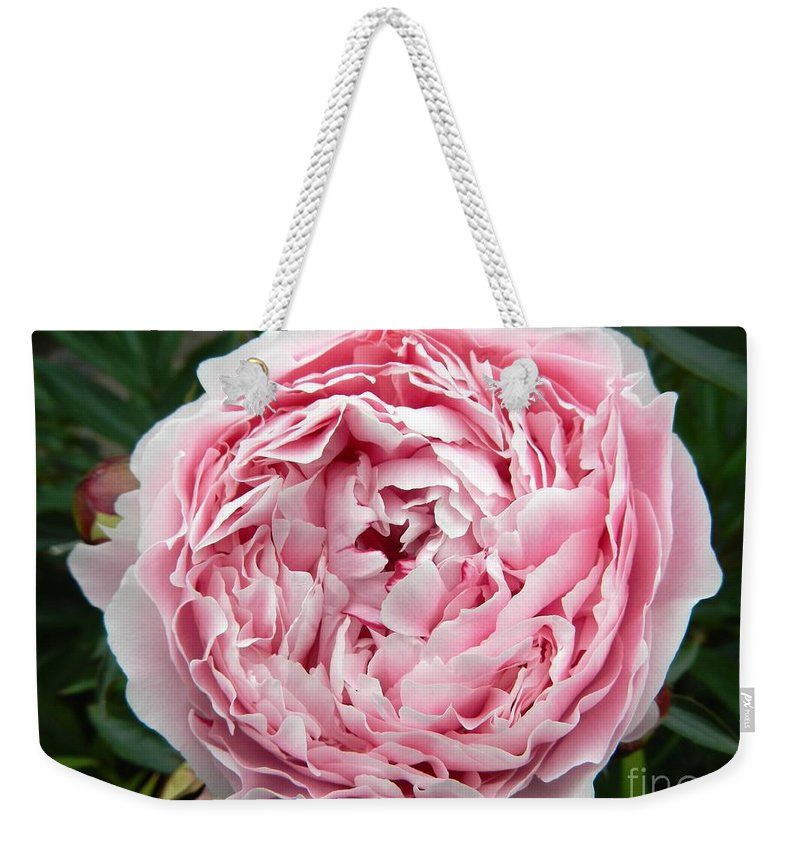 Floral Weekender Tote Bag featuring the photograph Curly Head by Loreta Mickiene