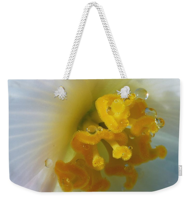 Macro Weekender Tote Bag featuring the photograph Curly by Wendy Wilton