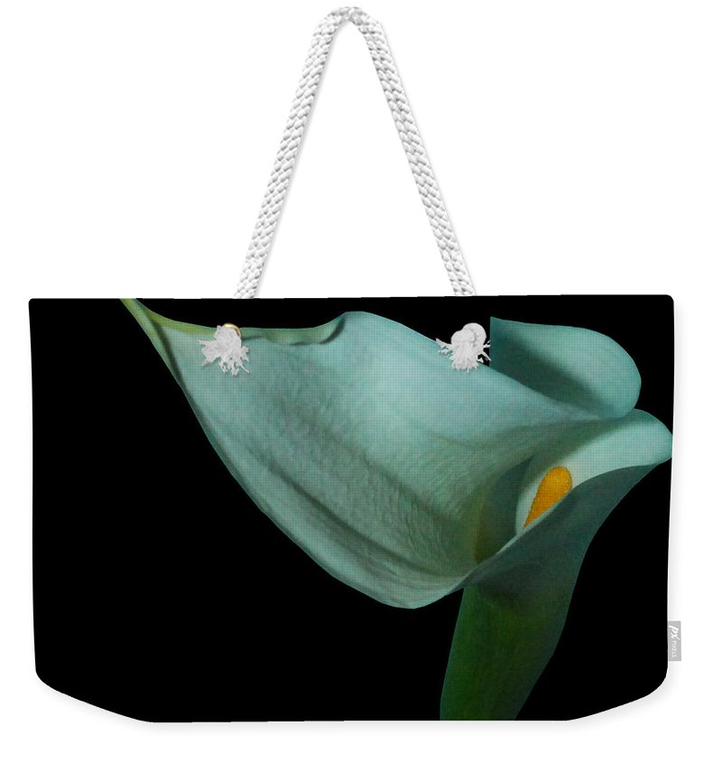 Lily Weekender Tote Bag featuring the photograph Curvacious by Heather Kirk