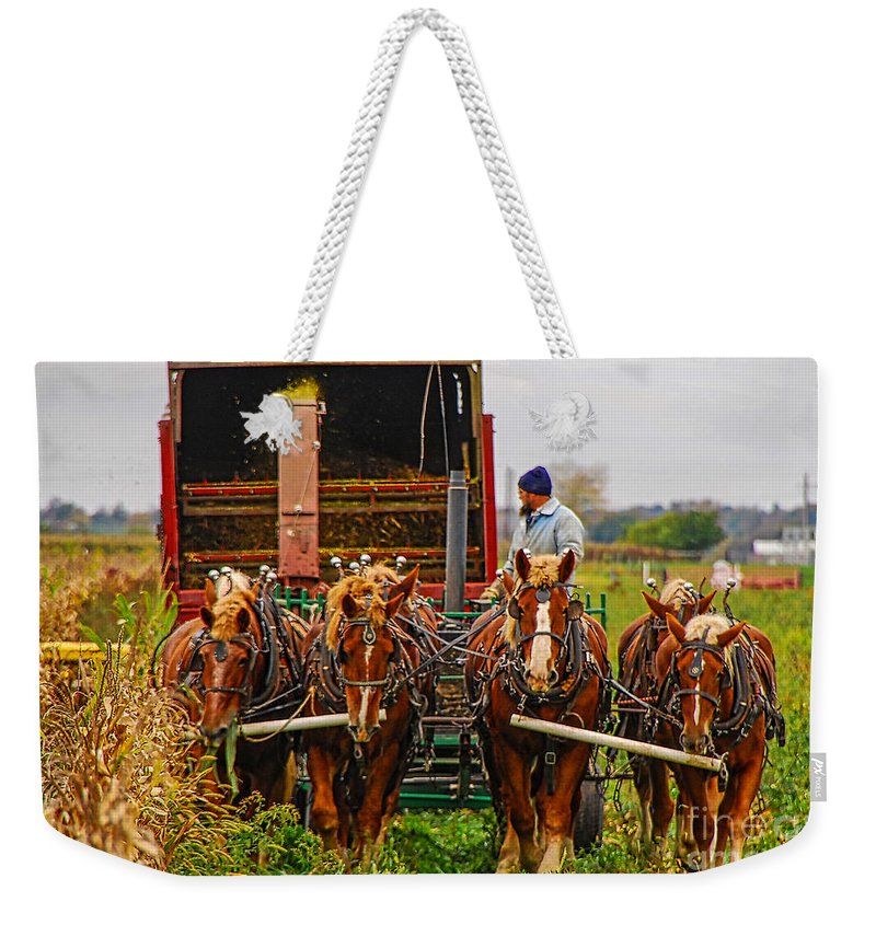 Horse Weekender Tote Bag featuring the photograph Cutting Silage 2 by Mary Carol Story