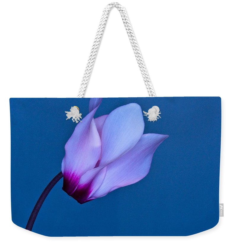 Flower Weekender Tote Bag featuring the photograph Cyclamen On Blue by Phyllis Meinke