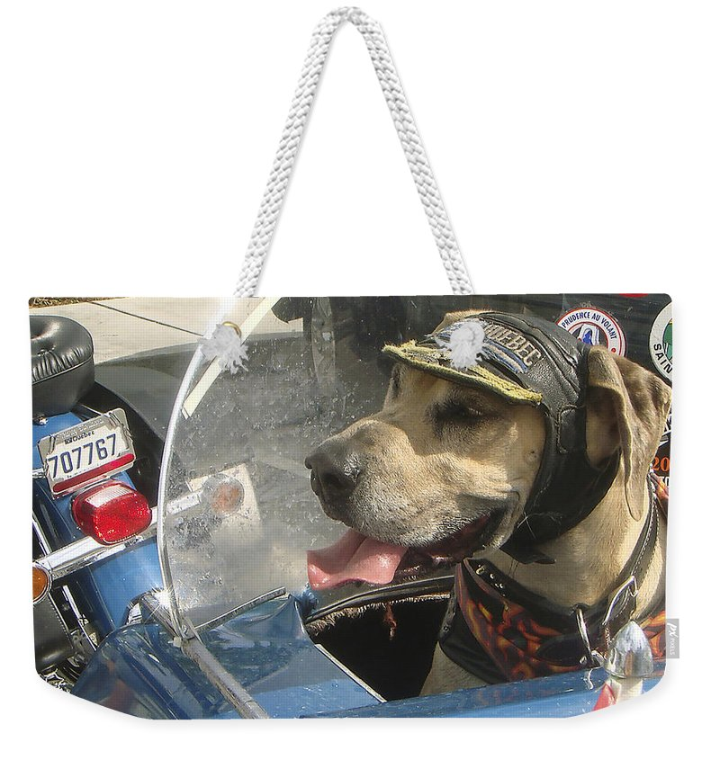 Karen Zuk Rosenblatt Art And Photography Weekender Tote Bag featuring the photograph Cycle Dog Square by Karen Zuk Rosenblatt