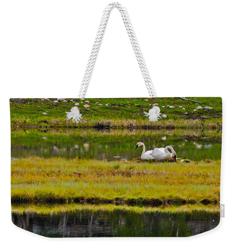 Island Weekender Tote Bag featuring the photograph Cygnet Ring by Gary Holmes
