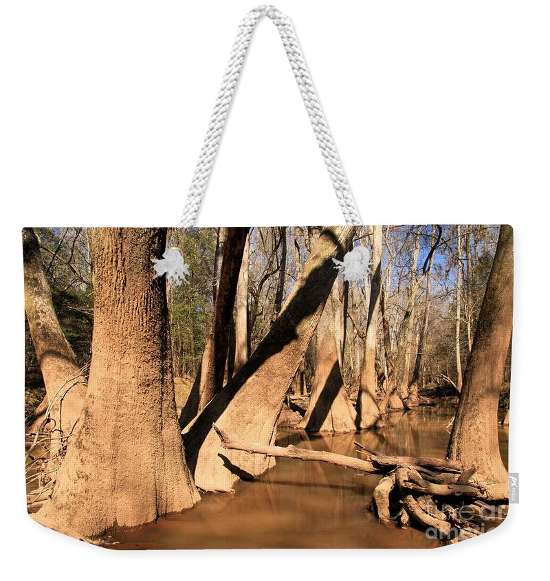 Congaree National Park Weekender Tote Bag featuring the photograph Cypress Hallway by Adam Jewell